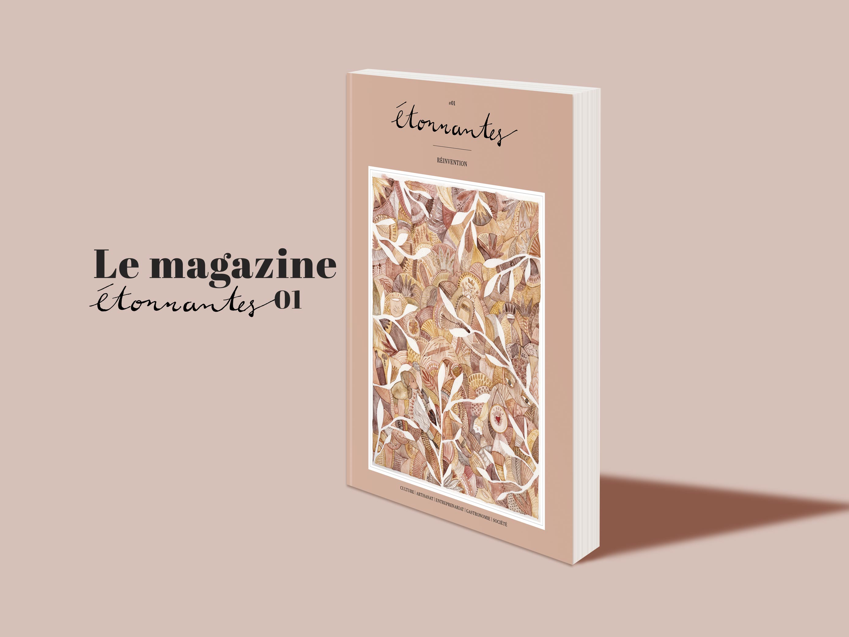 etonnantes-magazine-papier-revue-projet-crowdfunding-solennlarnicol-couverture-illustration